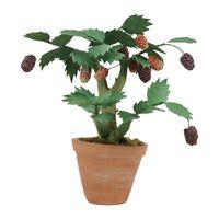 bonsai-berries-big