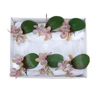 http---www.vestindoamesa.com.br-imagem-produto-gift-set-mini-orquidea-phalaenopsis-big