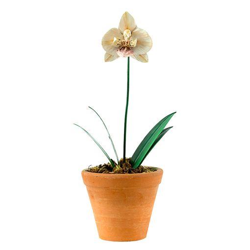 Vaso Orquídea Arabesque P Zanatta Casa
