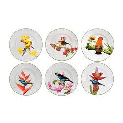 jogo-de-pratos-fundos-aves-brasileiras-37-interno-103947