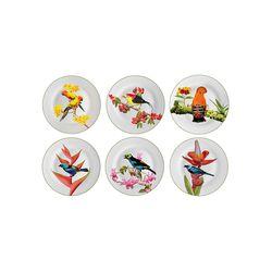 jogo-de-pratos-rasos-aves-brasileiras-36-interno-041331