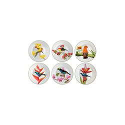 jogo-de-pratos-para-sobremesa-aves-brasileiras-32-interno-041306