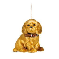 cachorro-labrador